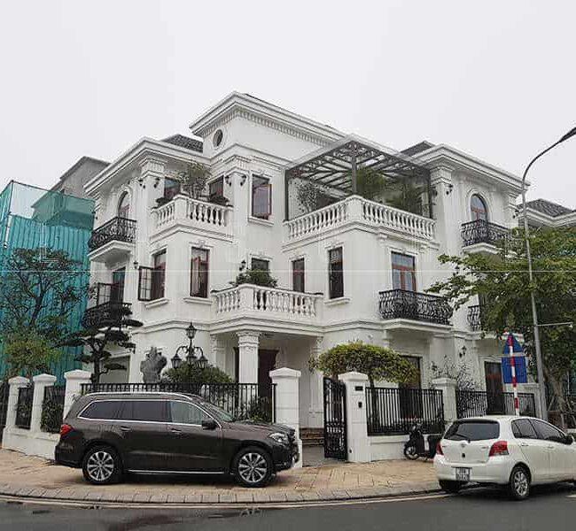 cửa lưới chống muỗi villas thạch thảo 25