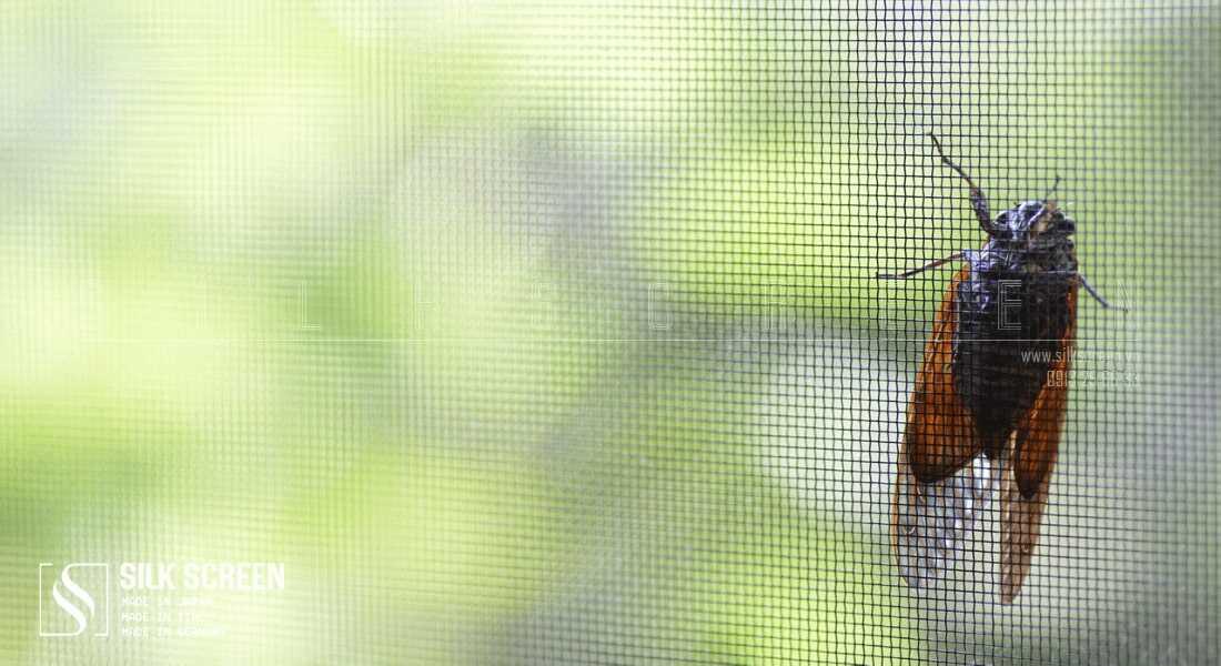 lưới chống côn trùng giá bao nhiêu