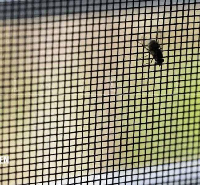 địa chỉ bán lưới chống muỗi